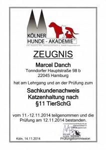 Qualifikation GOLD CAT Katzenbetreuung Hamburg Marcel Danch Sachkundenachweis Katzenhaltung - Katzenbetreuung - §11 TierSchG