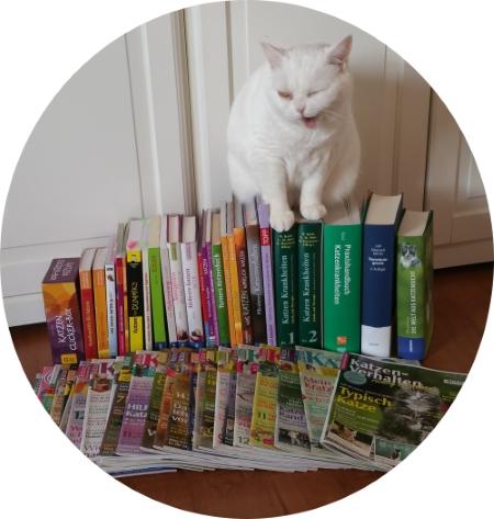 Qualifikationen GOLD CAT Katzenbetreuung Hamburg. Ihr zertifizierter Katzensitter. Meine Katzenlektüre findet unsere Katze Maja auch sehr interresant